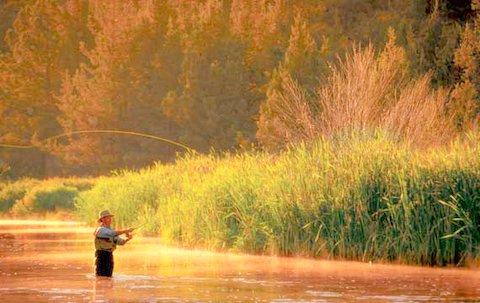 Fly fishing like social media | 2degrees media | jeff abramovitz